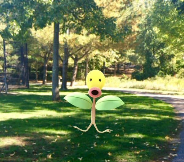 bellsprout-pokemon-juggling-with-julia