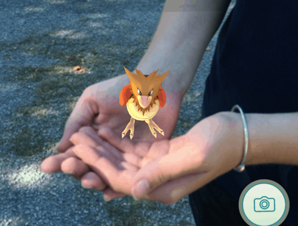 spearow-in-hand-juggling-with-julia